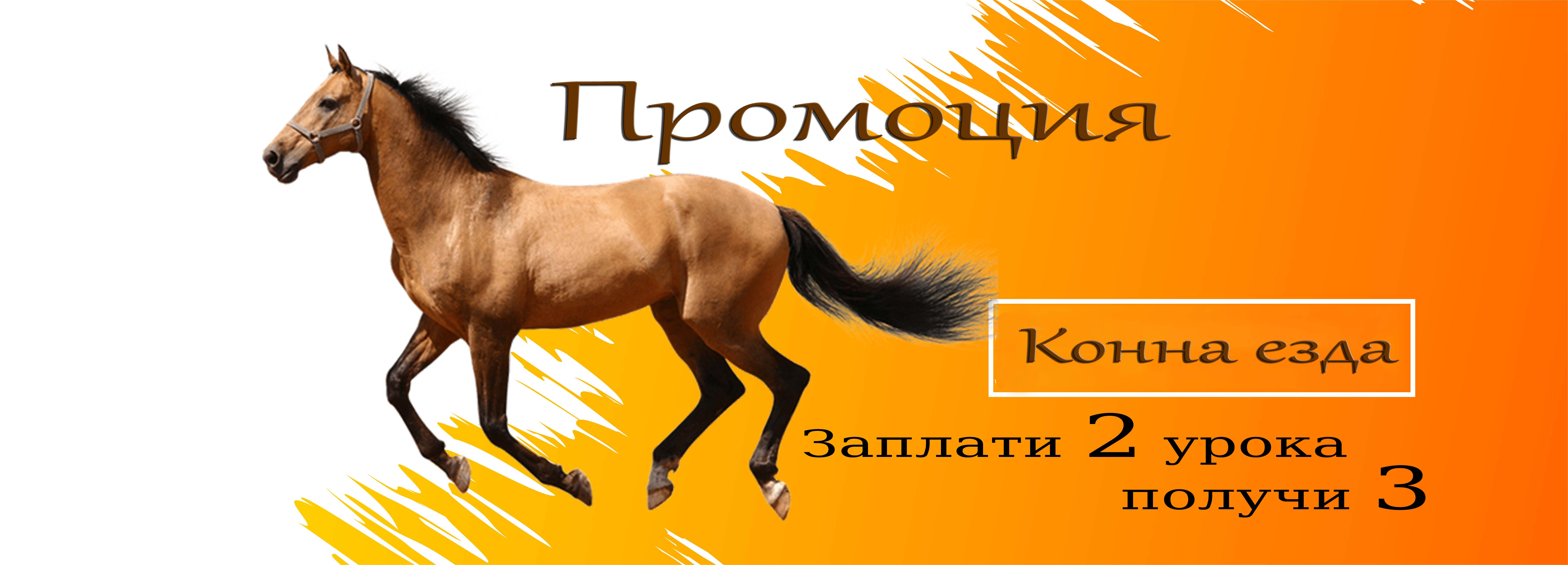 horseriding promotion